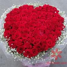 100枝玫瑰/爱你百分百