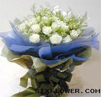 77枝玫瑰/七七快乐:19枝白玫瑰/一生相伴