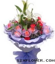 16枝粉玫瑰+康乃馨/一生幸福