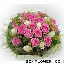 你是爱的指针/33枝红玫瑰:亲爱的,永远快乐/桃红玫瑰19支