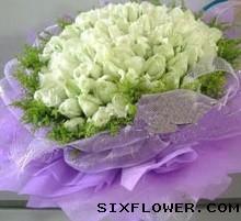 99枝白玫瑰/白色公主