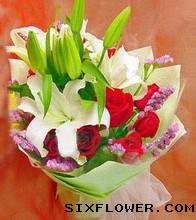 11枝红玫瑰/精彩祝福