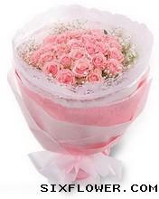 你不知道我在想你/77枝粉玫瑰