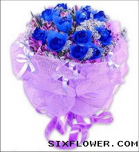 11枝蓝玫瑰/蓝色妖姬