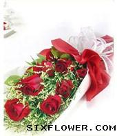 9枝红玫瑰/长相守