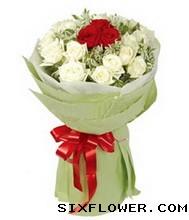 爱的光芒照耀你/11枝红色玫瑰:有位佳人,在水一方