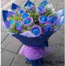 19枝蓝玫瑰/承诺