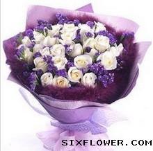 28枝白玫瑰/绵绵的思念