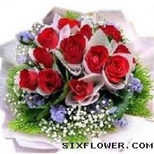 一爱到底/11枝红色玫瑰桔梗绣球:11枝红玫瑰/好温暖
