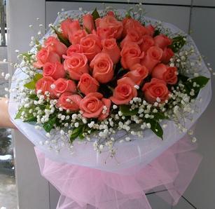 33枝粉玫瑰/如此迷人
