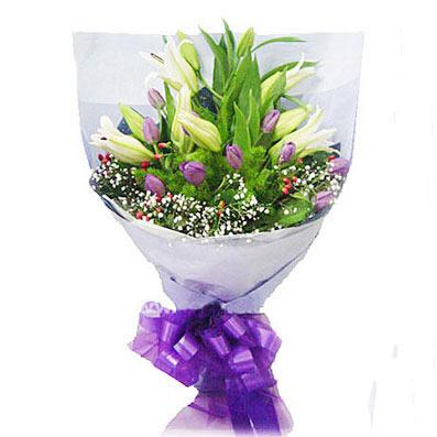 紫色郁金香11枝