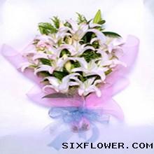 19枝康乃馨/妈妈的关爱:6枝香水百合/诗情画意