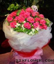 20枝桃红康乃馨/深深的祝福