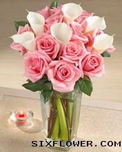 每天都有好心情/33枝粉色康乃馨:瓶插花/爱你在心里