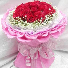 19枝红玫瑰/我的情,你感受到了吗