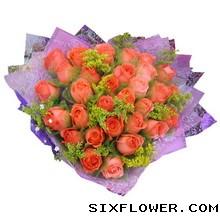 33枝粉玫瑰/相偎相依