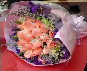 理想的风帆_19枝粉玫瑰
