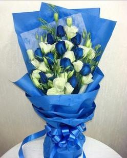 健康快乐_11枝蓝玫瑰