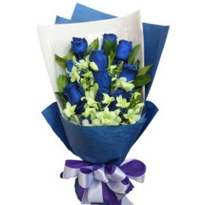 美丽的传说_11枝蓝玫瑰