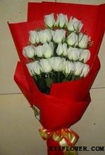 纯洁无暇_21枝白玫瑰