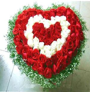 66枝香槟玫瑰/爱的温馨:守护你/99枝玫瑰