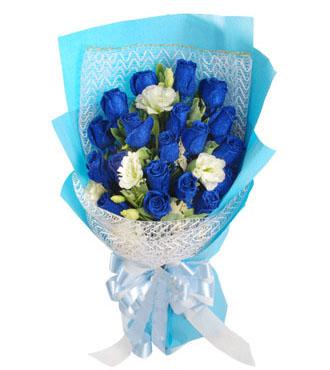 我用心爱你_19枝蓝玫瑰
