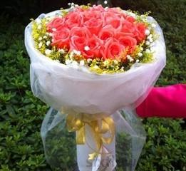 19枝粉色玫瑰/夜夜想你