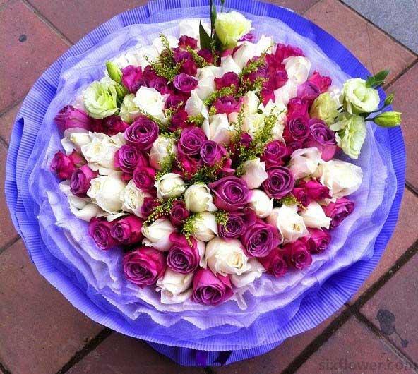 真的好牵挂你/11枝紫色玫瑰礼盒:99枝玫瑰/难忘今宵