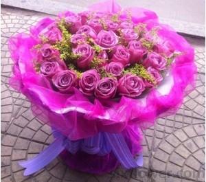 24枝紫玫瑰/孤独的心被融化