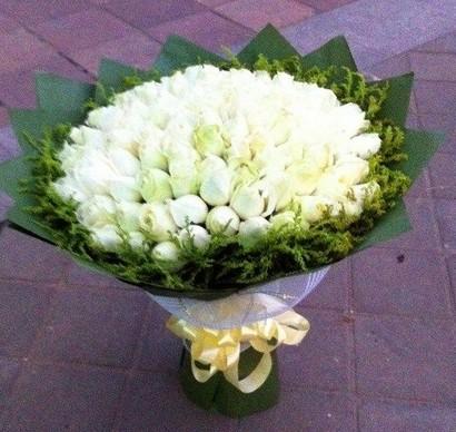 默默为你做一切/21枝红色玫瑰:99枝白色玫瑰/洁白的心