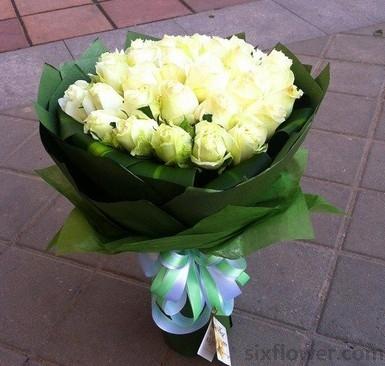 25枝白玫瑰/天真美丽幸福
