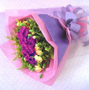 黛安娜玫瑰9枝/你是我的唯一:真心祝福/36枝康乃馨