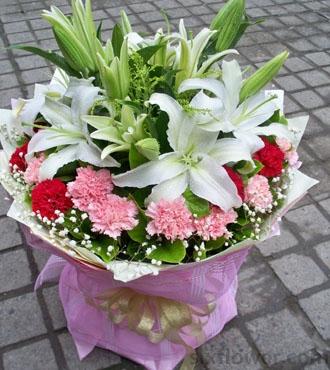 开心的祝愿/5枝向日葵:爱的感恩/18枝康乃馨+百合