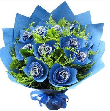 11枝蓝玫瑰/蓝色理想