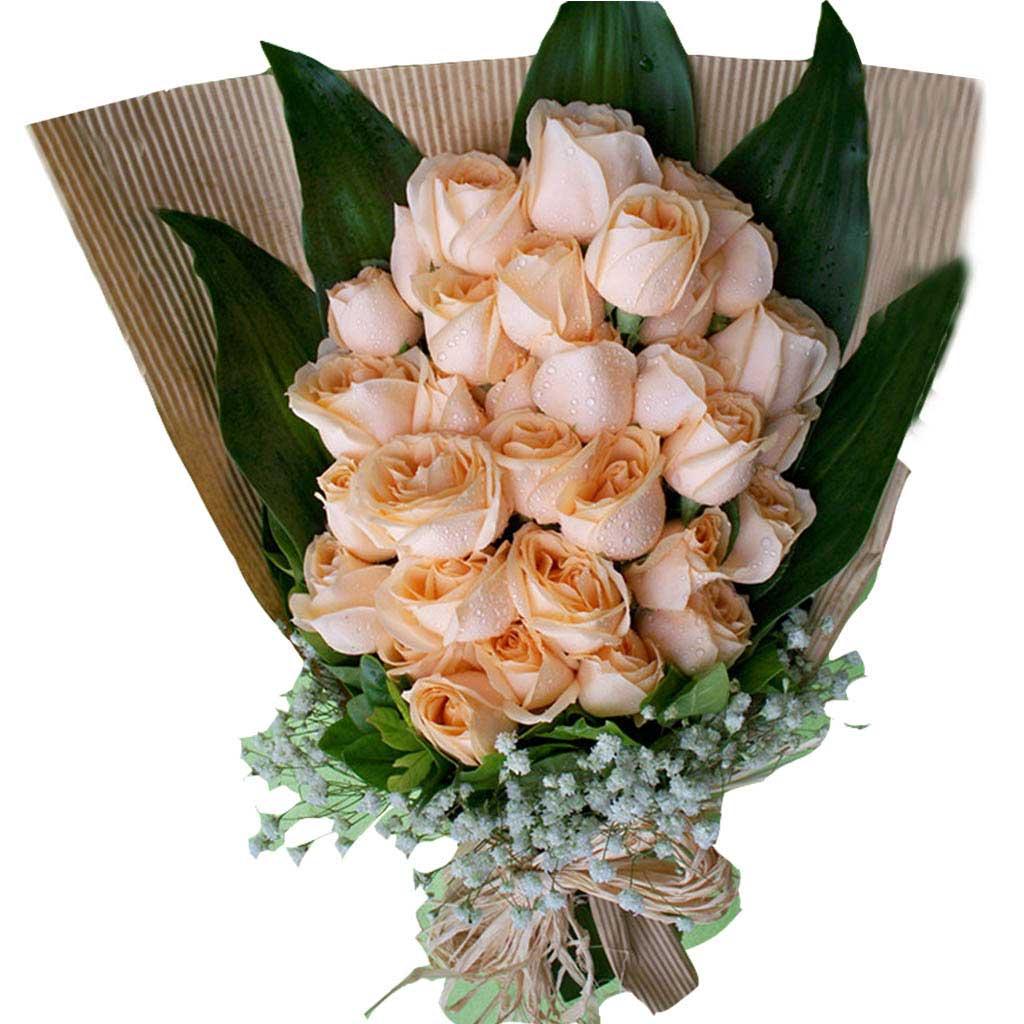永远呵护你/17枝粉玫瑰巧克力:爱的初体验/33枝香槟玫瑰