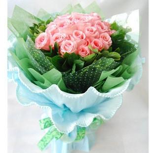 爱的港湾/22枝粉玫瑰