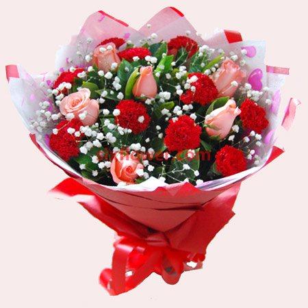 寸草心/6枝玫瑰+10枝康乃馨
