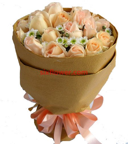 永不腿色的祝福/19枝玫瑰绣球花:香摈玫瑰29枝/韵味悠长