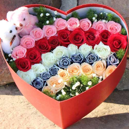 可爱的小鸟/盒装39枝玫瑰