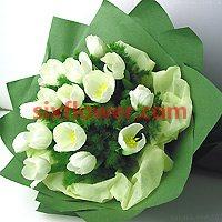 白色郁金香10枝/高贵与雅致