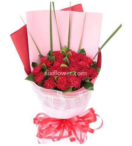 我爱您妈妈/5枝百合玫瑰:让微笑谱成春天的乐章/20枝康乃馨