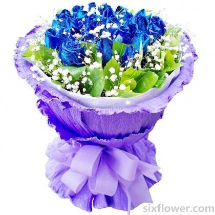 富贵吉祥/19枝粉色康乃馨:这就是爱/16枝蓝玫瑰