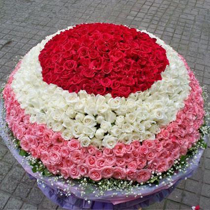 白头偕老/999枝玫瑰