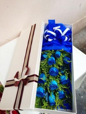 香槟玫瑰99枝/把��暖暖地融化:爱的誓言/11枝盒装蓝玫瑰
