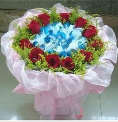 幸福的节拍_19枝蓝+11枝红玫瑰