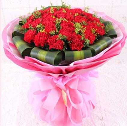 26枝红色康奈馨/永远爱你