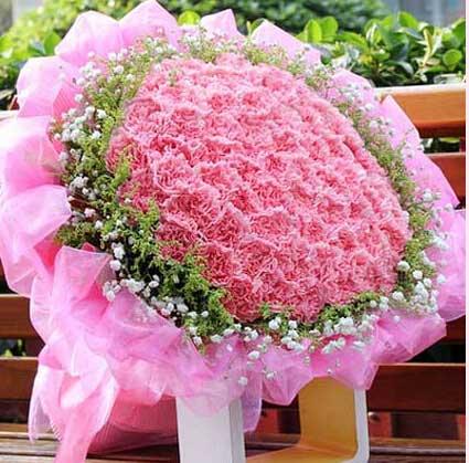 想你/19枝康乃馨礼盒:牵挂您/99枝粉色康乃馨