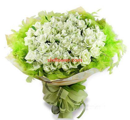 一捧洁白的爱/50枝白色玫瑰