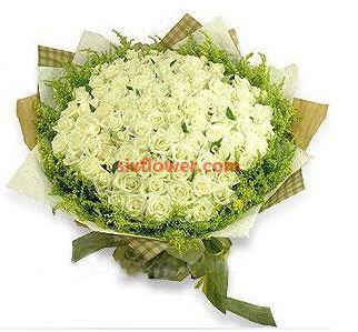 爱永恒/12枝粉玫瑰:温馨喜悦/101枝白玫瑰