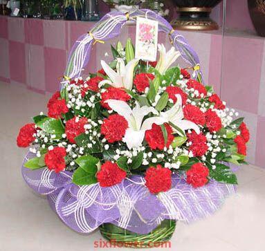 29支红色康乃馨/祝福永远陪在身边